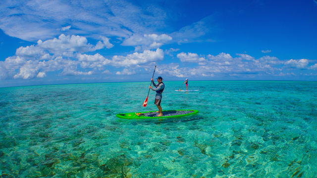 Top 10 Best Islands In Belize, Top 10 Belize Islands Vacation, Image result for Glover's Reef Atoll