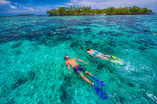 Snorkelling on Paradise Islands Trip