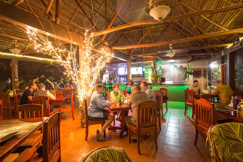 The Wild Fig Jungle Bistro and Bar at Bocawina Rainforest Resort