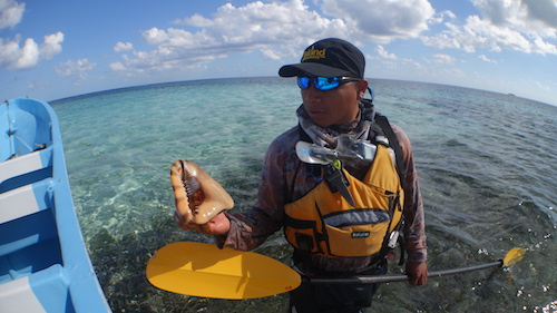 Guide Capi with a conch