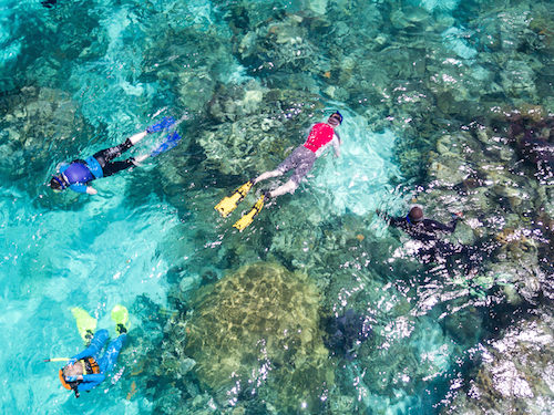Snorkeling Glovers Reef, Belize
