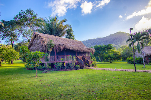Thatched Cabana at Bocawina