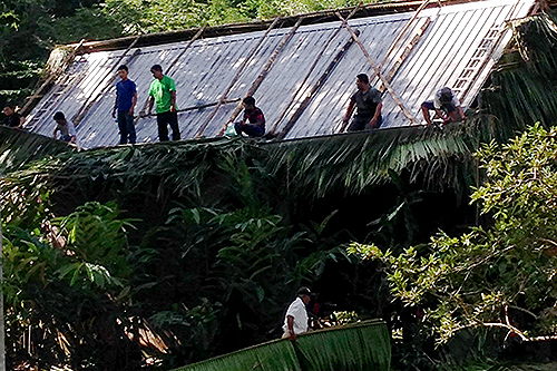 Roofing at Bocawina Rainforest Resort