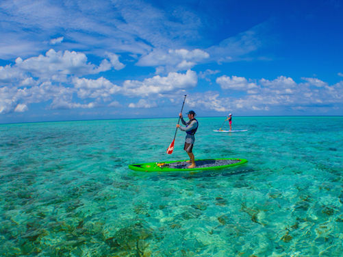 SUP on Glover's Reef, Belize
