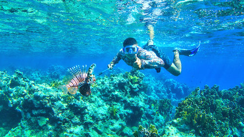 Lionfish hunting Belize