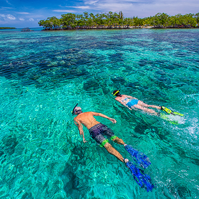 Snorkeling at Billy Hawk Caye