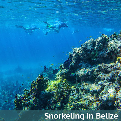 Snorkeling at Glover's Reef Atoll, Belize