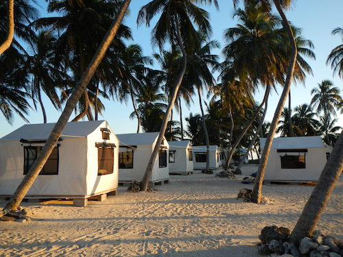 The tent cabanas at the Lighthouse Reef Basecamp on Half Moon Caye