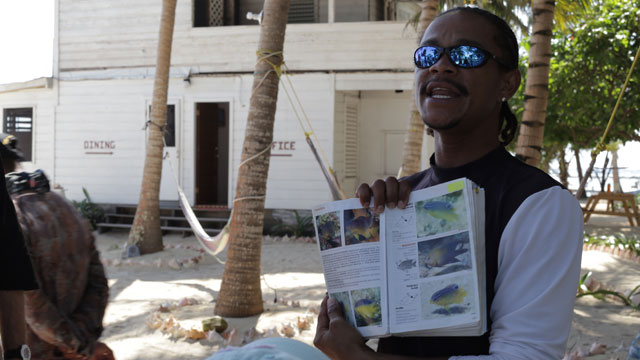 belize vacations blog toronto star touch natalie preddie worthwhile expedition