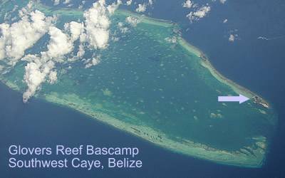 Southwest Caye, Glover's Reef Atoll