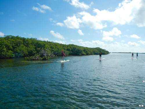 Exploring different regions of the southern Belize Barrier Reef including mangrove ranges and protected lagoons.