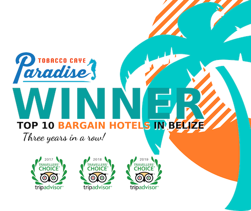 Tobacco Caye Paradise Top 10 Bargain Hotels in Belize by the Travellers Choice Awards with TripAdvisor
