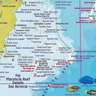 Dive Sites around Placencia