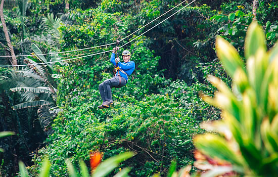 Rainforest Canopy Extension Zipline