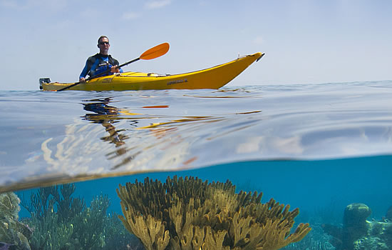 Single Sea Kayak & Coral