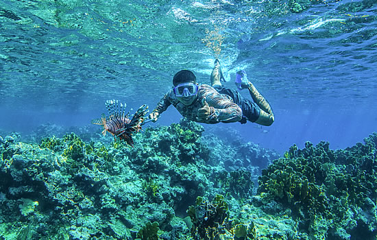 Underwater with lionfish in belize