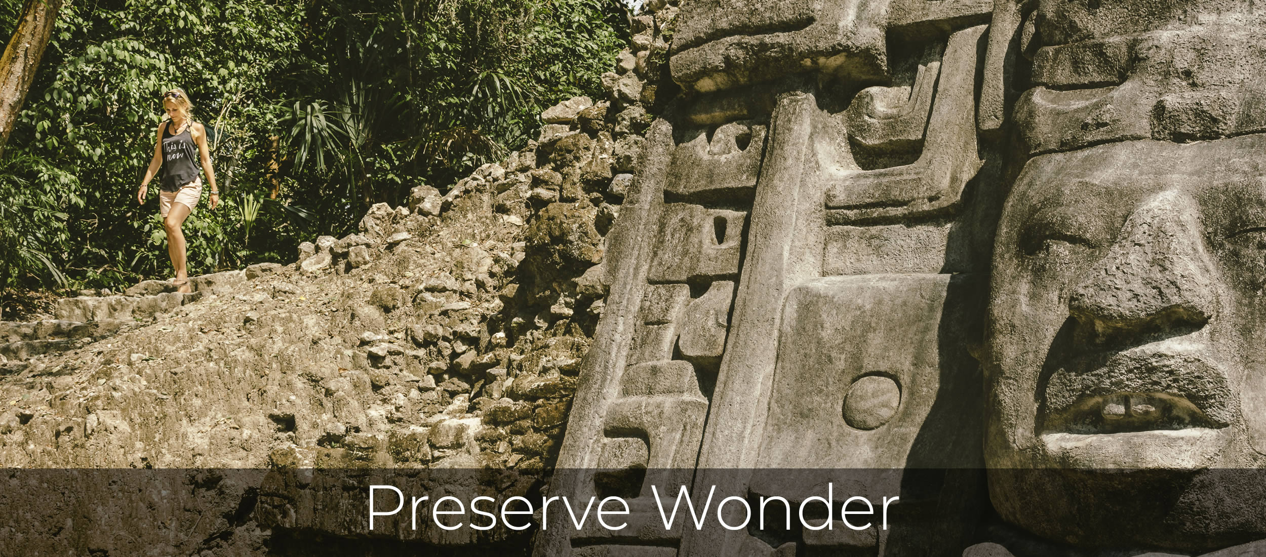 Preserve Wonder