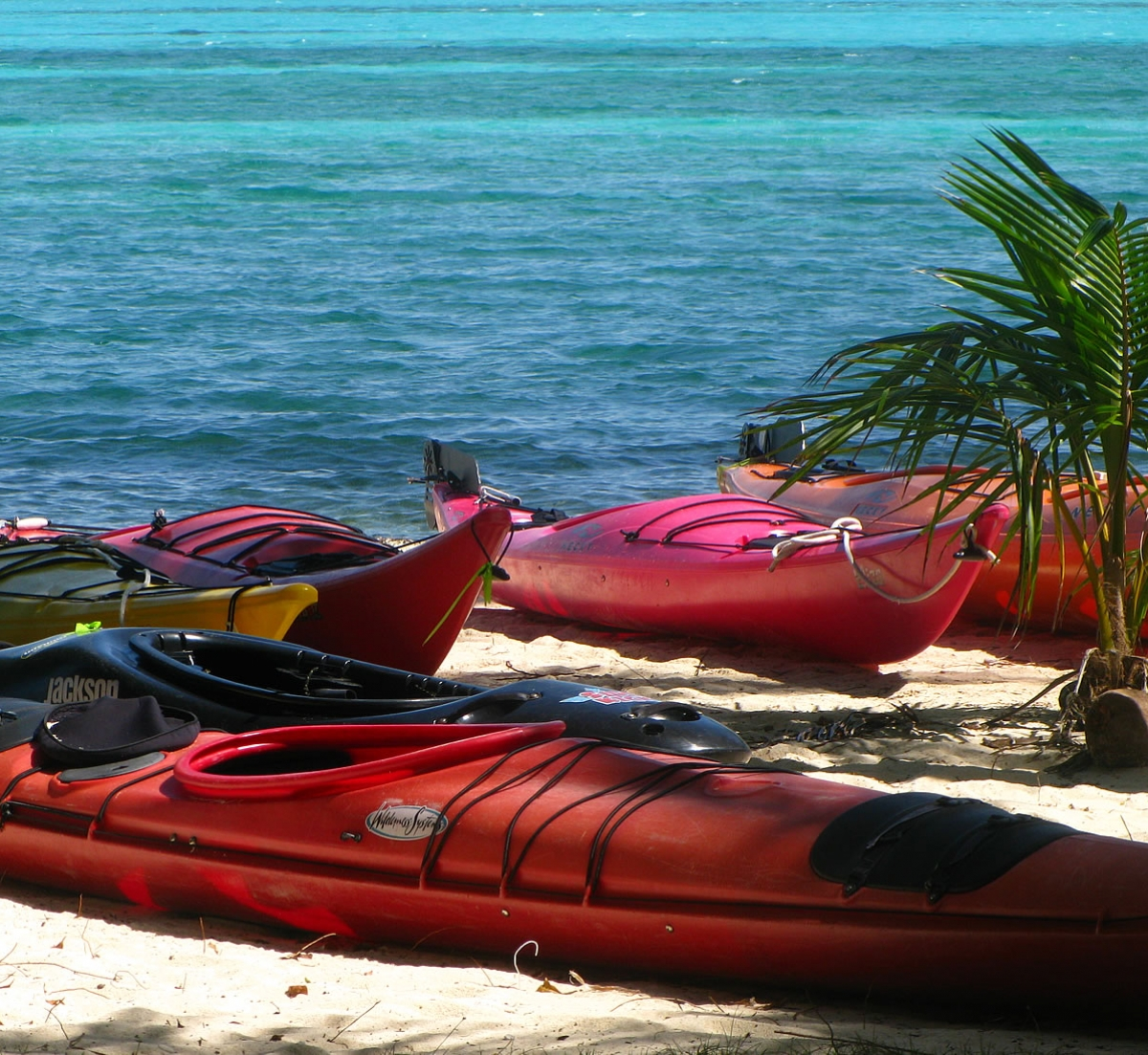 Gear and Kayaks on the beach