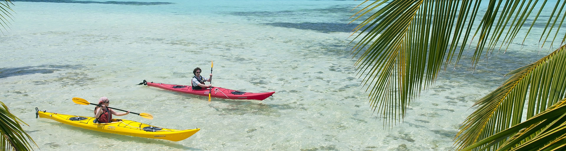 Glover's Reef & Kayak Rental Combo