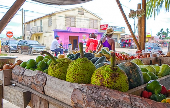 Fruit at the Dangriga Market