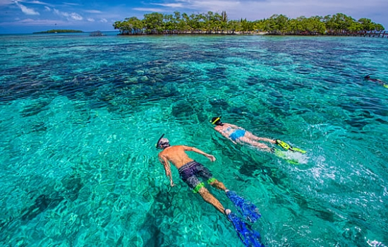 Snorkelling off Billy Hawk Caye