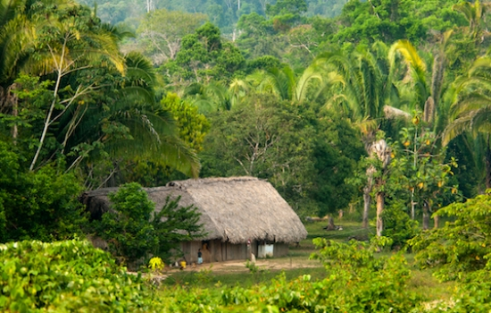 Mayan Village of Santa Theresa in Belize