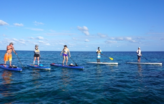 SUP at Glover's Reef