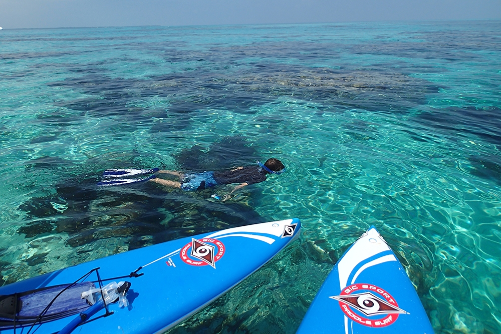 SUP and Snorkeling in Belize