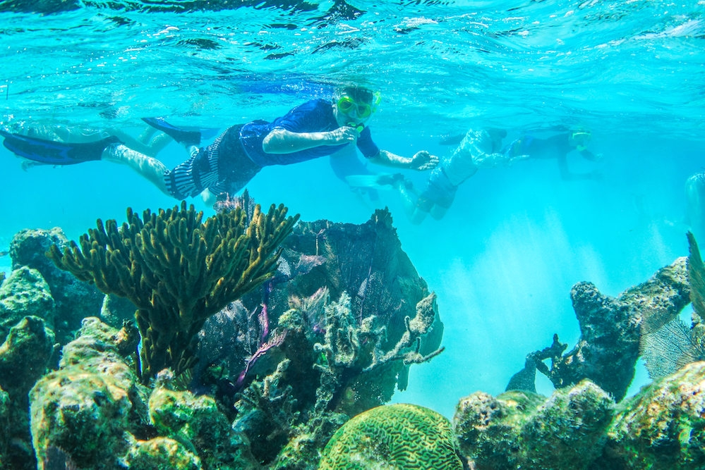Snorkeling at Glover's Reef
