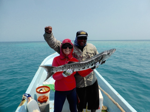 Barracuda at Glovers Reef